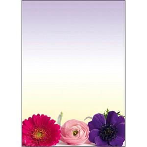 Motivpapier Flower Harmony von sigel