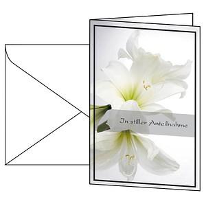 Trauerkarten weiße Amaryllis von SIGEL